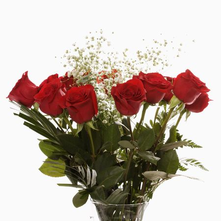 devoted: Bouquet of long-stemmed red roses with babys breath against white background. Stock Photo