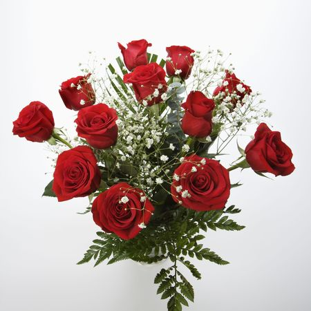 amore: Bouquet of long-stemmed red roses with babys breath against white background. Stock Photo