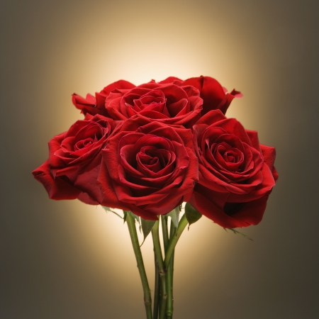 amore: Bouquet of red roses against glowing golden background.