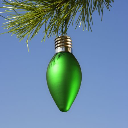 customs and celebrations: Green ornament hanging on Christmas tree branch against blue background.