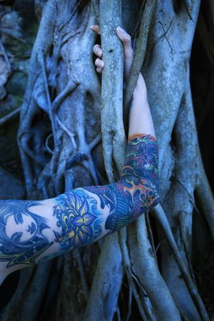 banyan tree: Blue-toned portrait of tattooed Caucasian womans arm intertwined with Banyan tree in Maui, Hawaii, USA. Stock Photo