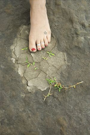 Caucasian female foot on muddy rocky ground with weeds. photo