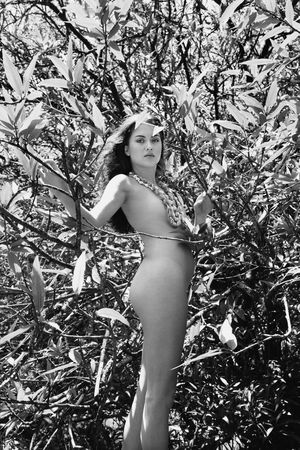 half nude: Nude young adult woman standing amongst branches and leaves looking at viewer.