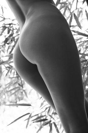 fesse: Fermer des jeunes adultes femme nue face arri�re avec du bambou en arri�re-plan.