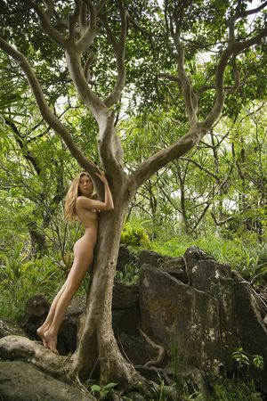 nude outdoors: Nude Caucasian young adult woman in lush forest hugging tree branch.