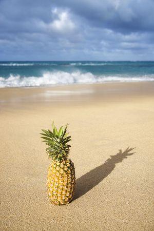 Whole pineapple on tropical beach. photo