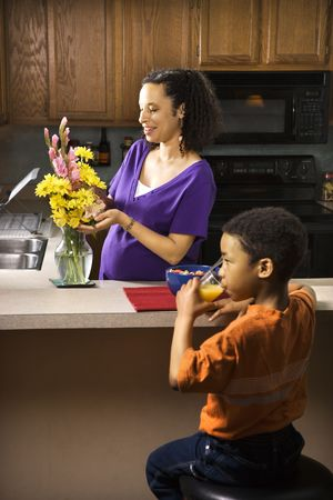 Portrait of young pregnant mother arranging flowers while son eats breakfast. Stock Photo - 2227057