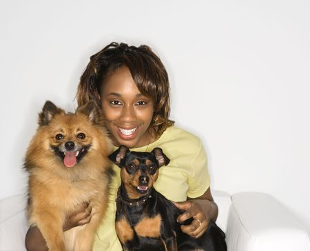 pinscher: African American young adult female holding brown Pomeranian and Miniature Pinscher dogs. Stock Photo