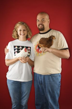 Caucasian mid-adult man and woman holding chickens. photo