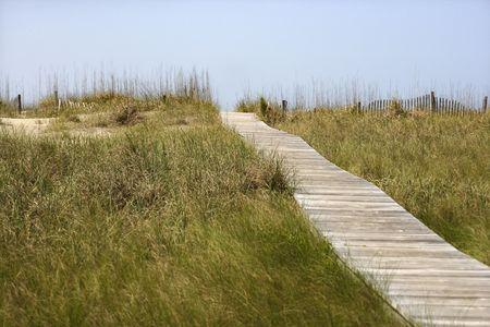 bald head island: Wooden access path to beach on Bald Head Island, North Carolina. Stock Photo