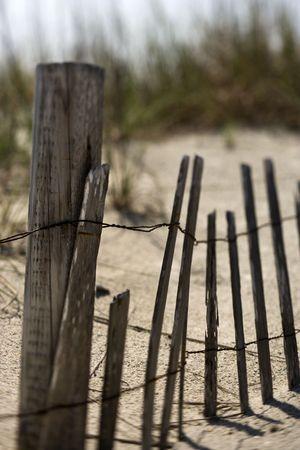 bald head island: Weathered fence on sand dune on Bald Head Island, North Carolina.