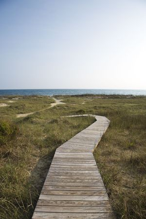bald head: Wooden pathway to beach on Bald Head Island, North Carolina. Stock Photo
