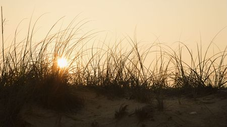 bald head island: Sunset over beach sand dune on Bald Head Island, North Carolina. Stock Photo