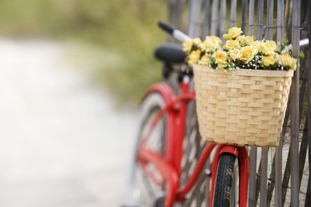 flower basket: Red vintage bicycle with basket and flowers leaning against wooden fence at beach.