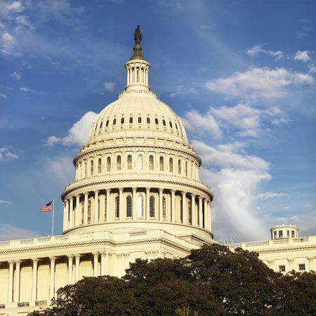 district of columbia: Capitol Building in Washington, DC, USA.