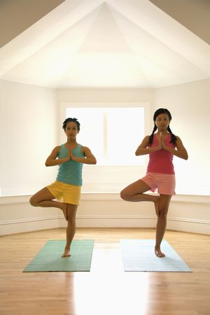 Two young women balancing doing yoga tree pose. photo