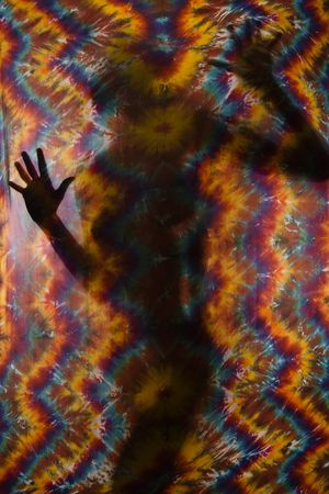 Woman silhouetted behind tye-dye fabric. Stock Photo - 2654662