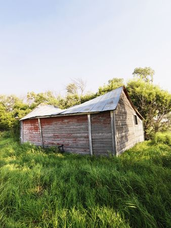 Abandoned wooden barn in state of disrepair in lush field. photo