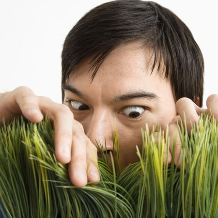 determined: Asian young man looking through grass with determined expression.