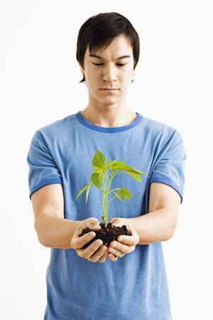capsaicin: Asian man standing looking at growing cayenne plant.