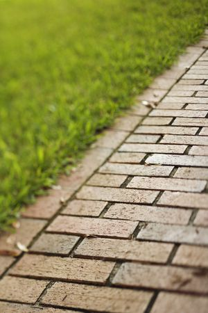 straight path: Selective focus shot of red brick walkway. Vertical shot.