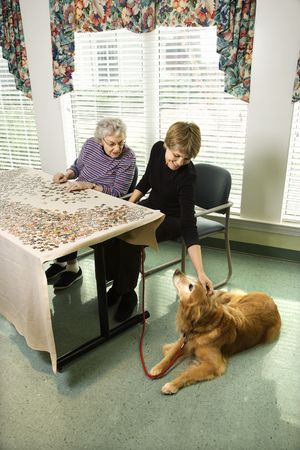 Elderly woman does a jigsaw puzzle while a younger woman pets a therapy dog. Vertical shot. photo