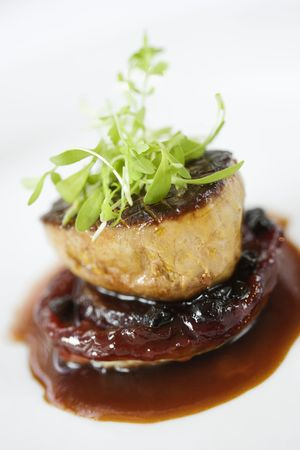 Dinner entree in a gourmet restaurant with sprouts and brown sauce. Vertical shot. Stock Photo - 6395955