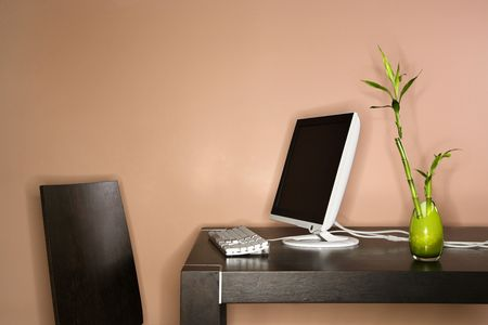 Computer on a table sitting next to a bamboo plant in a vase. Horizontal shot. Stock Photo - 6428025