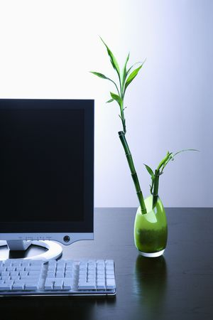 Computer monitor sitting on a desk with a keyboard and a green opaque vase with a lucky bamboo plant in it. Vertical shot. Stock Photo - 6420532
