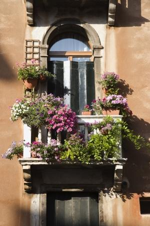 arcuate: Inquadratura dal basso della finestra ad arco con balcone e fiori a Venezia, Italia. Verticale di colpo.