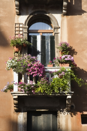 balcony: Low angle view of arched window with balcony and flowers in Venice, Italy. Vertical shot.