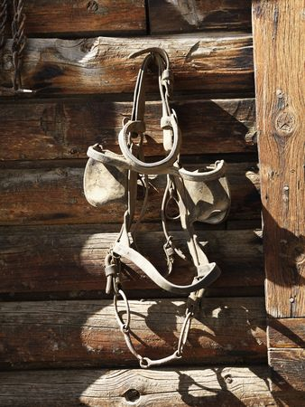 blinders: Bridle with blinders hanging on an old weathered wooden stable.