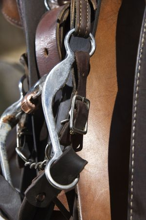 bridle: Close up of a horse bridle and bit. Vertical shot.