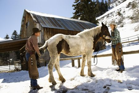 Man and woman grooming a horse on a snowy hillside in the country. Horizontal shot. photo