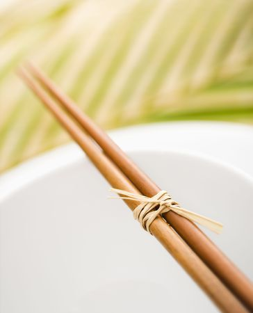 palm frond: Chopsticks lying across an empty bowl on top of a plate. The dishes are white, and there is a palm frond in the background. Vertical format.