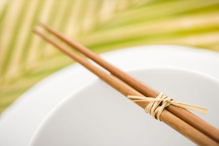 palm frond: Chopsticks lying across an empty bowl on top of a plate. The dishes are white, and there is a palm frond in the background. Horizontal format.