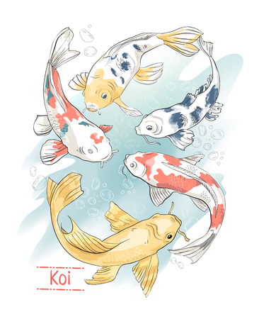 Set of colorful hand drawn koi