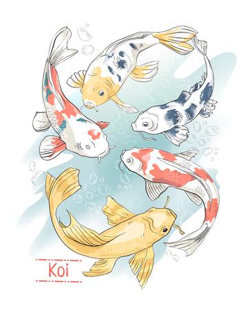 Set of colorful hand drawn koi