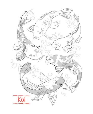 Conjunto de koi blanco y negro dibujado a mano Ilustración de vector