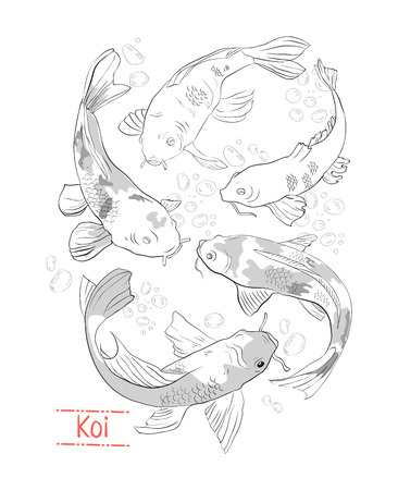 Set of black and white hand drawn koi