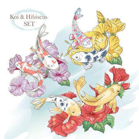 Beautiful set of exotic hibiscus and koi fish Illustration