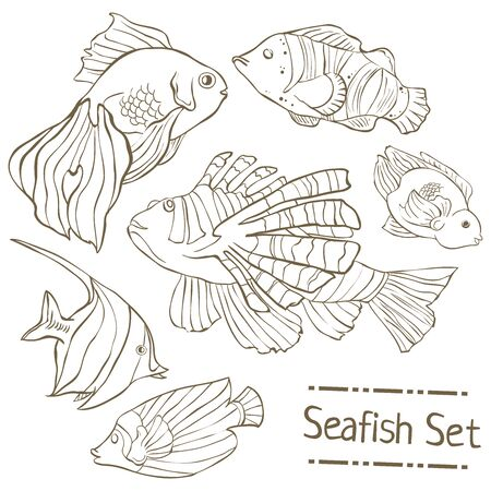Set of hand drawn sea fish isolated on white. Çizim