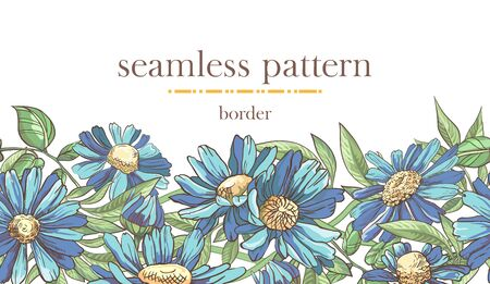 Seamless border pattern with sketch colorful blossoms. Seamless stripe with hand drawn camomile and leaves.