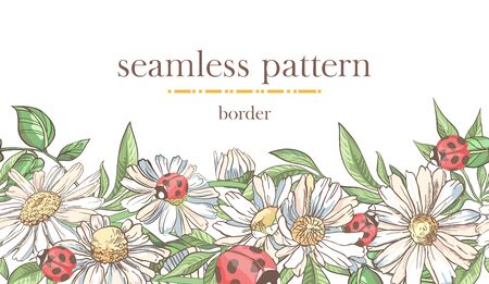 Seamless border pattern with sketch colorful blossoms. Seamless stripe with hand drawn camomile, ladybugs Ilustracja