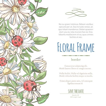Vector delicate invitation with white camomile and laybugs for wedding, marriage, bridal, birthday, Valentines day. Ilustracja