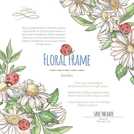 Vector delicate invitation with white camomile and laybugs for wedding, marriage, bridal, birthday, Valentines day. Floral border with sketch colorful blossoms. Frame with hand drawn flowers Ilustracja