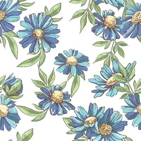 Seamless pattern with blue camomile on white background