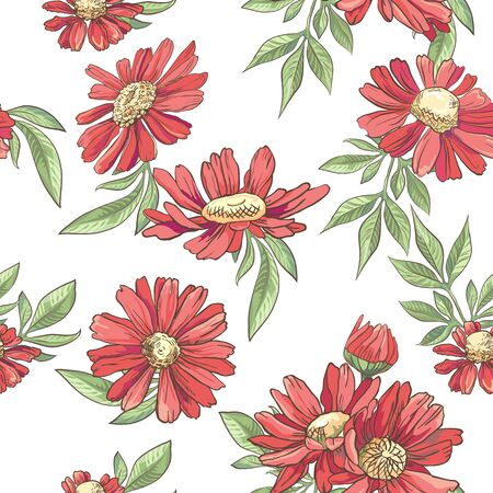 Seamless pattern with red camomile on white background