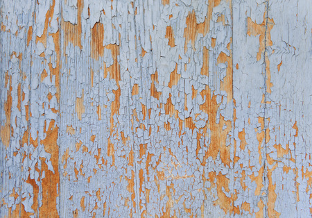 spall: Color-Peel wood texture. Blue colour. Old texture