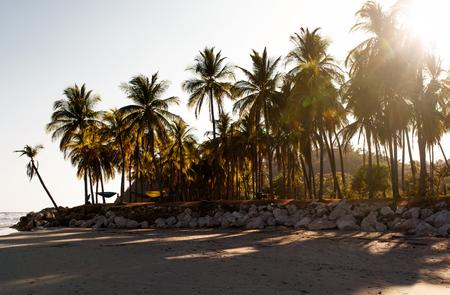 Sunset on tropical coastline. Costa Rica beach Stock Photo